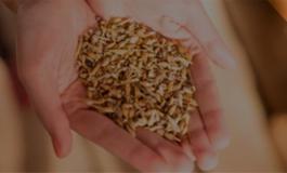 Del Pozo - Piensos y Cereales