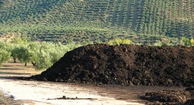 Agricultura acredita el proyecto de investigación de cooperativa Oleoestepa sobre el alperujo como compost orgánico.